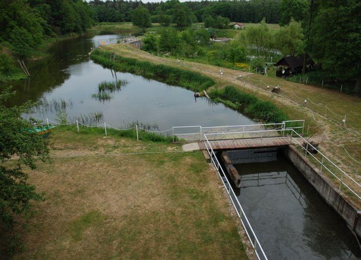 Dieses Wasser wurde einst für die Mühle genutzt