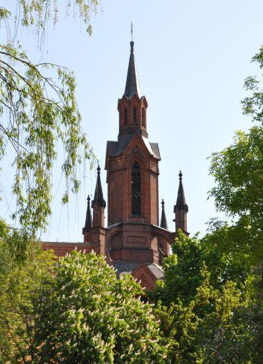 Dom Sankt Nikolaus in Kalisz, Ansicht von den Grünanlagen aus