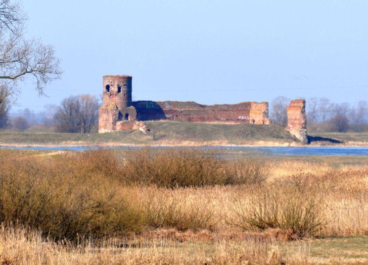 Ruinen der gotischen Burg in Koło