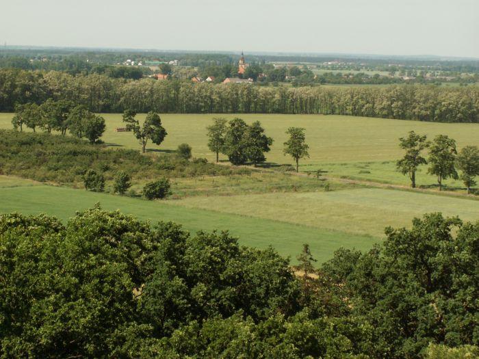 Der Chłapowski-Landschaftspark