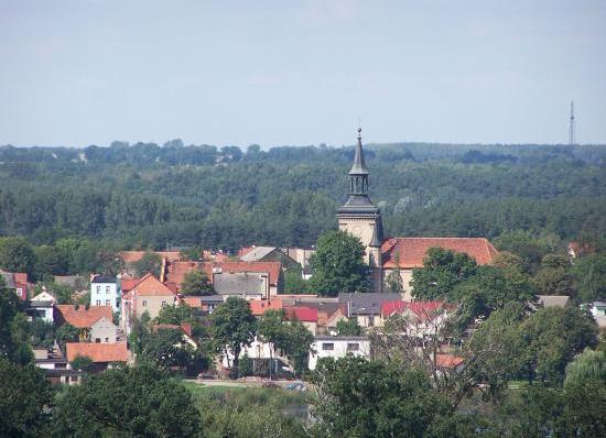 Panorama von Osieczna vom Aussichtsturm aus