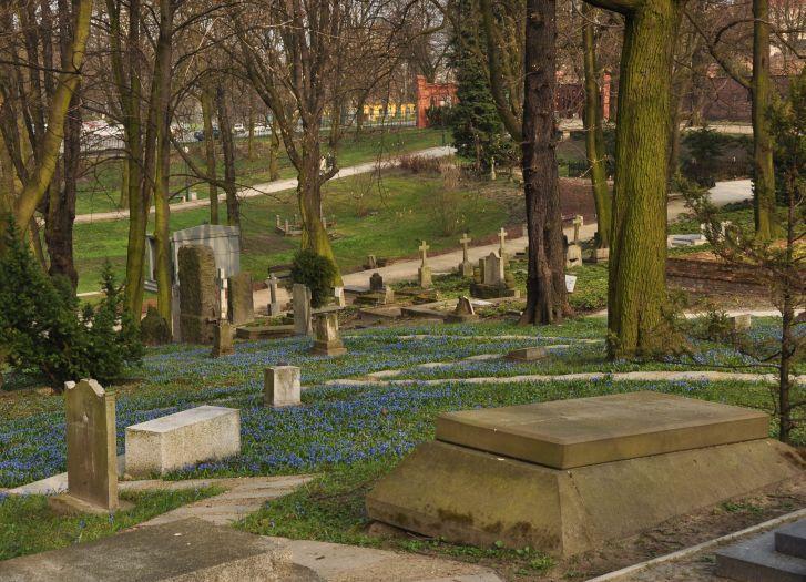 Cmentarz wczesną wiosną
