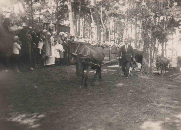 Tradycja odpustu św. Rocha udokumentowana w latach 30 XXw.