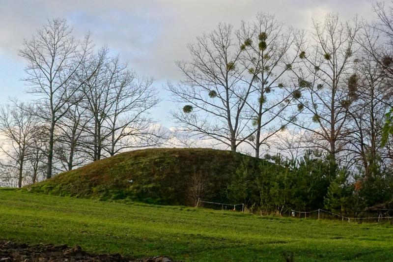 Herb Wielkopolskie piramidy