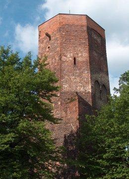 Herb Ostrzeszów<br>wieża kazimierzowska