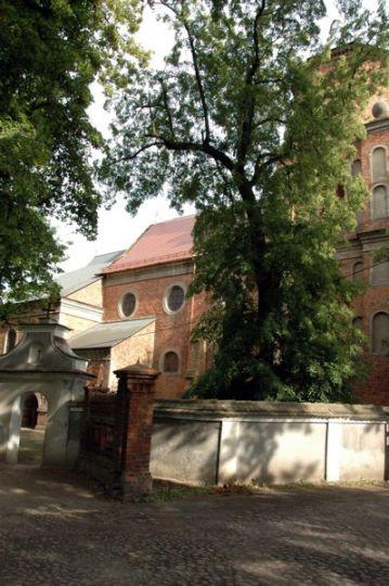 Kościół pw. św. Michała Archanioła w Czaczu