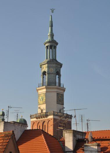 Widok wieży ratuszowej z Wzgórza Przemysła w Poznaniu