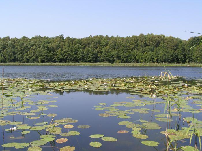 Jezioro Książe