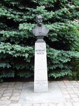 Pomnik Roberta Kocha w Wolsztynie