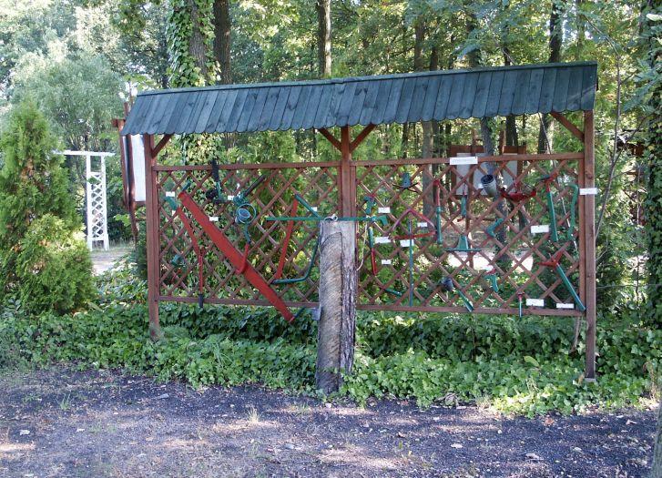 Edukacja przyrodniczo-leśna w gospodarstwie szkółkarskim Powidz