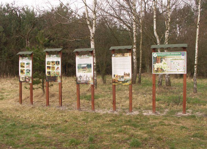 Ekologiczna ścieżka przyrodnicza koło Baszkowa