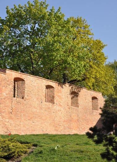 Fragment murów na Wzgórzu Przemysła w Poznaniu