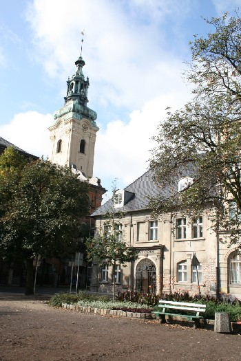 Herb Muzeum Okręgowe w Lesznie