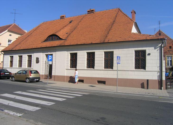 Herb Muzeum Regionalne w Pleszewie