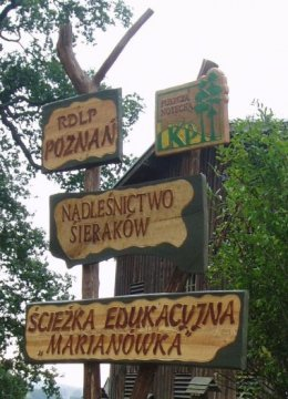 Lichwin ścieżka przyrodniczo-leśna Marianówka