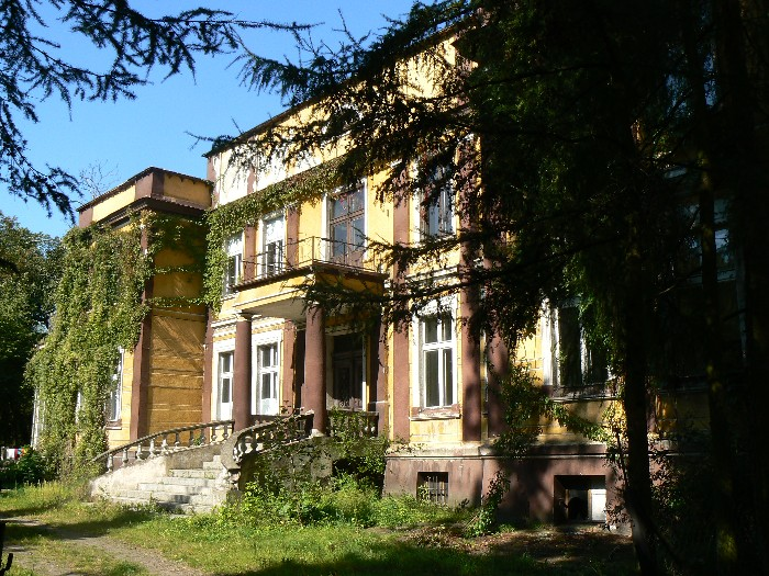 Pałac w Pogorzeli