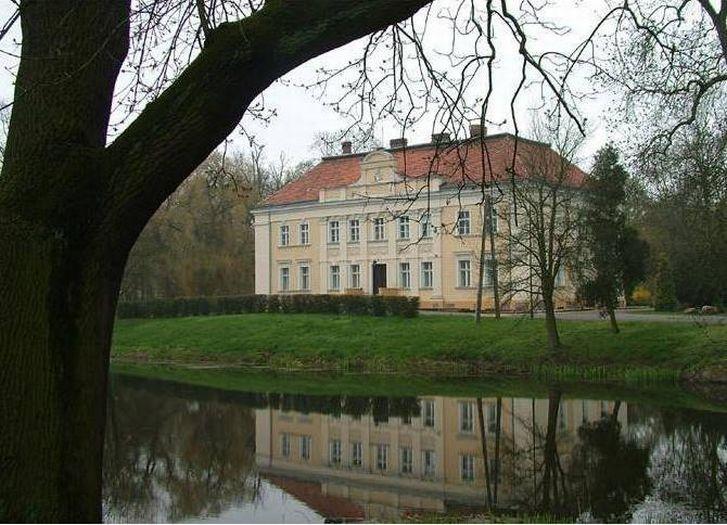 Pałac w Goli