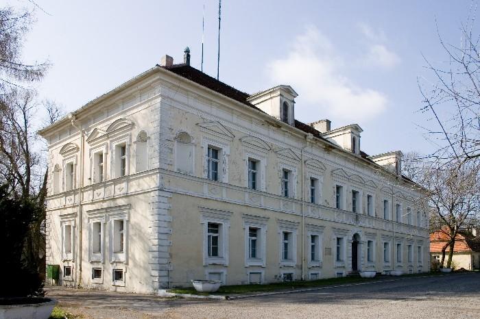 Pałac w Konarzewie