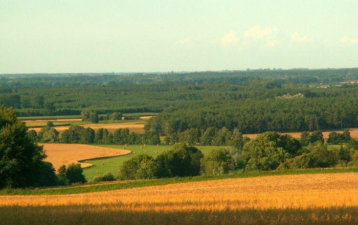 Panorama Szwajcarii Żerkowskiej