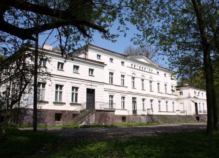 Pałac Czarneckich w Rakoniewicach