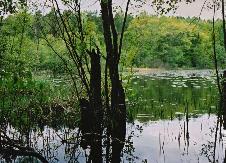 Herb Rezerwat Krajobrazowy Kuźnik
