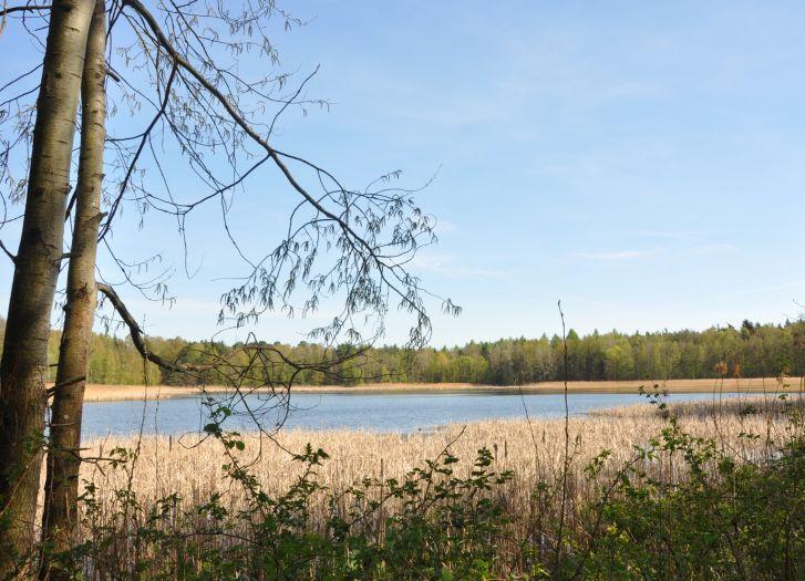 Herb Rezerwat krajobrazowy Wydymacz