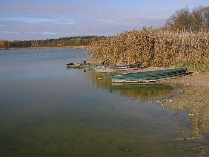 Jezioro Brzeskie