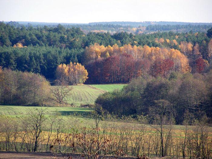 Jesień w Pszczewskim Parku Krajobrazowym
