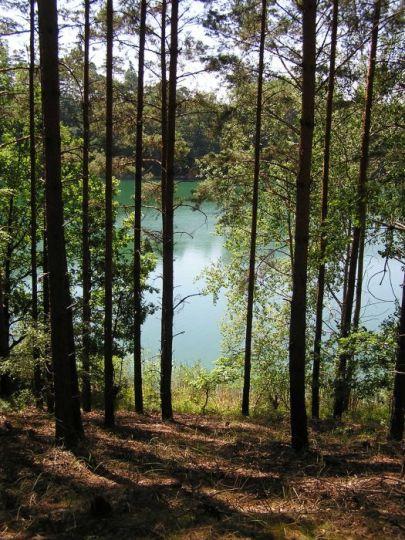 Jezioro Piecniewo w Pszczewskim Parku Krajobrazowym