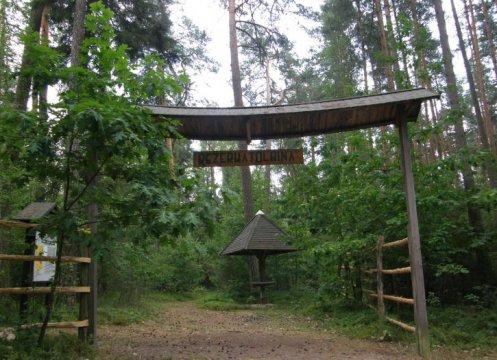 Herb Wilcze Ługi ścieżka leśna w rezerwacie Olbina