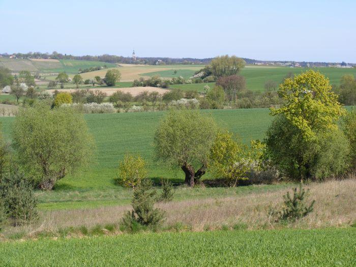 Sierakowski Park Krajobrazowy