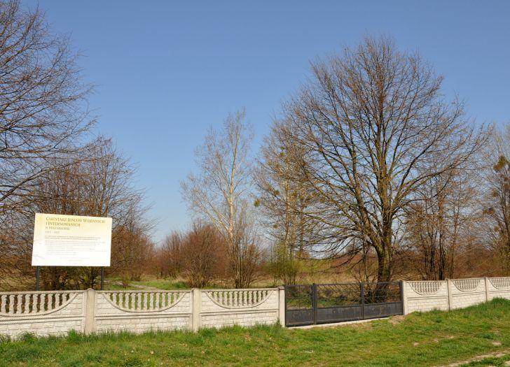 Cmentarz jeńców wojennych znajduje się w szczerym polu między Strzałkowem a Słupcą