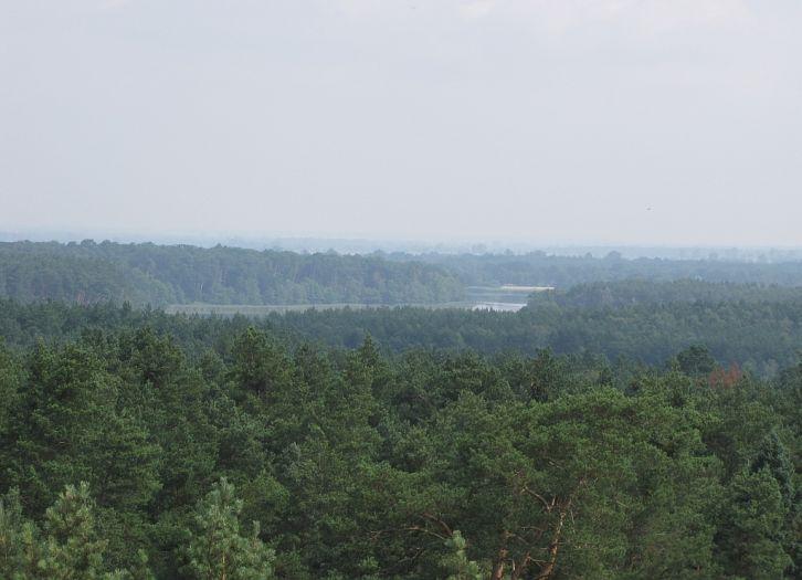 Wieża widokowa w Olejnicy