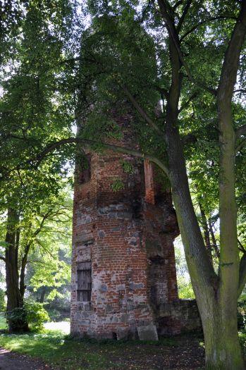 Pozostałości zamku w Wyszynie