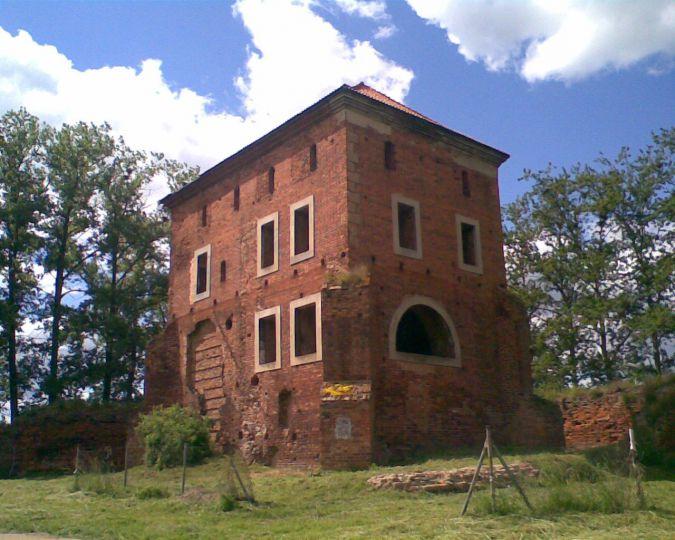 Zamek Pałuków w Gołańczy