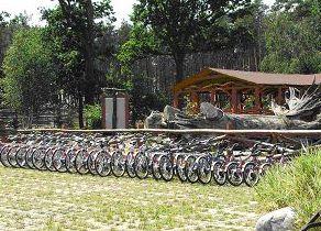 Wypożyczalnia rowerów w Ośrodku Edukacji Leśnej