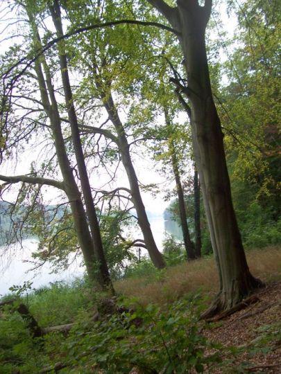 Stroma krawędź rynny jeziora polodowcowego