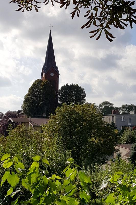 Smukła wieża neogotyckiego kościoła, widok zza drzew , pochmurne niebo